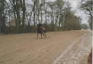 gallops2_005